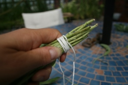 Wrap the ends of the sage
