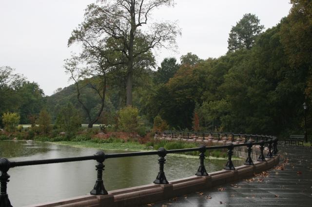 Restored lagoon